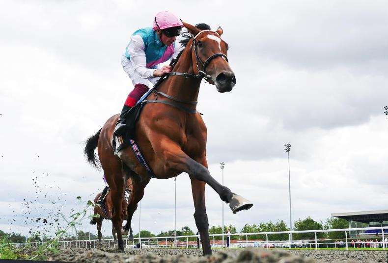 MONDAY OUTLOOK: Enable still has something to prove as Arc takes shape