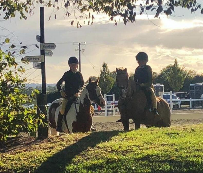 PONY TALES:   IPS well represented at HOYS