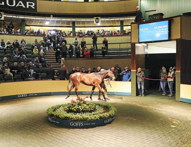 GOFFS ORBY SALE IN PHOTOS