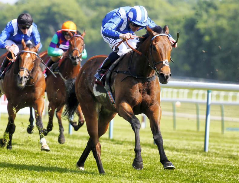 DONN McCLEAN: Champion Sprinter title up for grabs