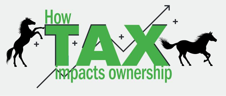 HORSE SENSE: Tax consequences of horse ownership