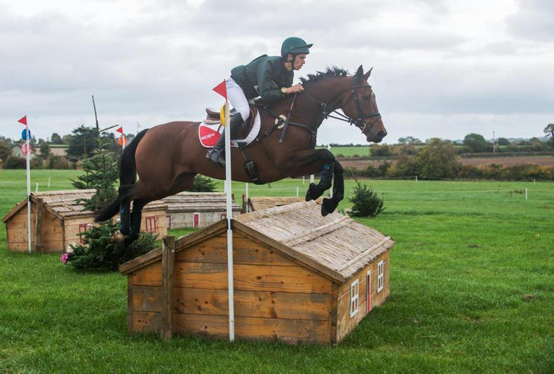 EVENTING:  Daniels dominates with OLS King Aragon