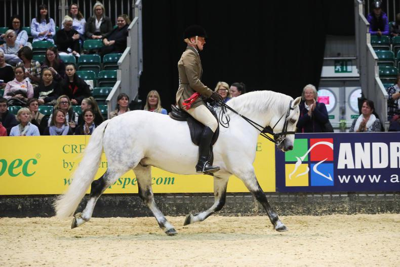 HOYS 2018: Home-bred victory for Fallon and Rocket