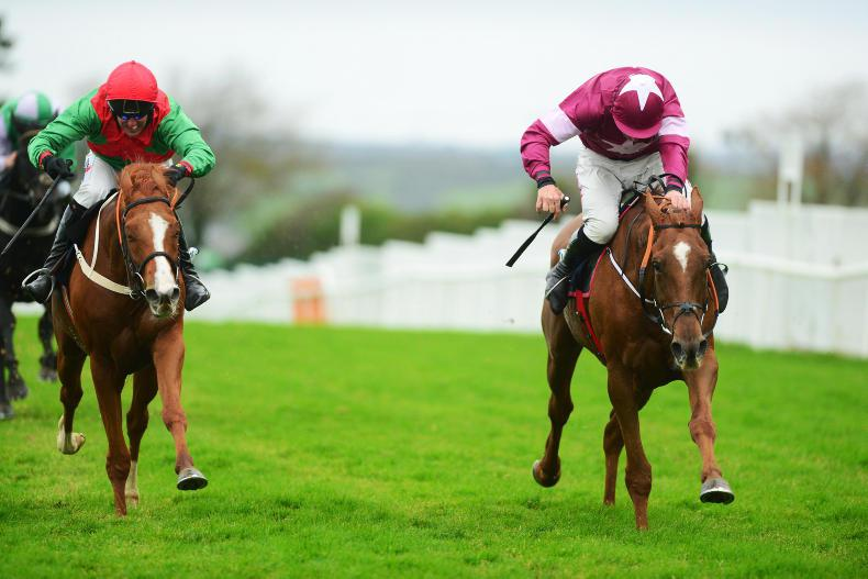 GALWAY TUESDAY: Woods looks Well worth following