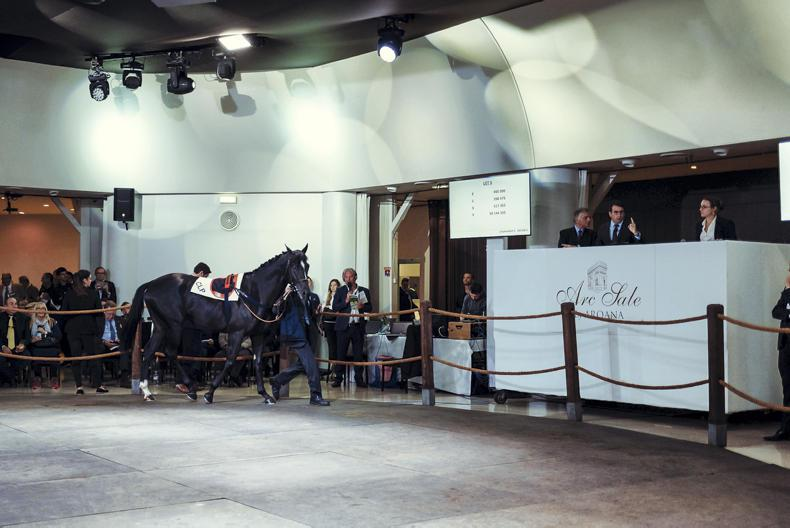 SALES: Group 1 winner sells on the eve of her success