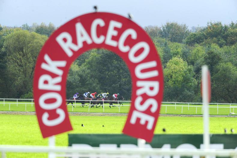 Letter to the Editor: Owners well looked after in Cork Racecourse