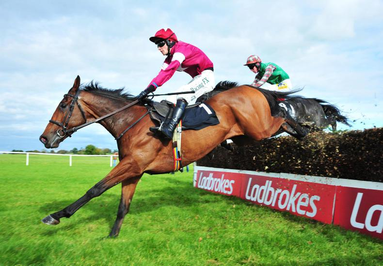 LIMERICK SUNDAY PREVIEW: Alpha can go one better in Munster