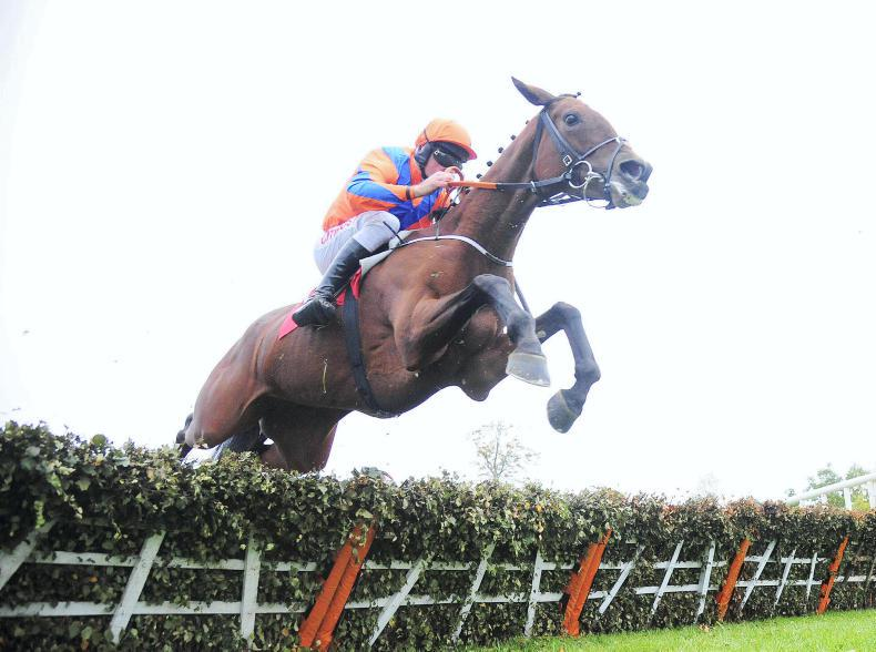 FAIRYHOUSE SATURDAY: My Heart to her continue great strides