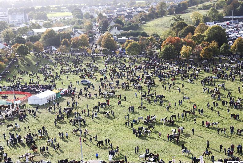 BALLINASLOE FAIR: Working together is the key to a solution for Ballinasloe Fair