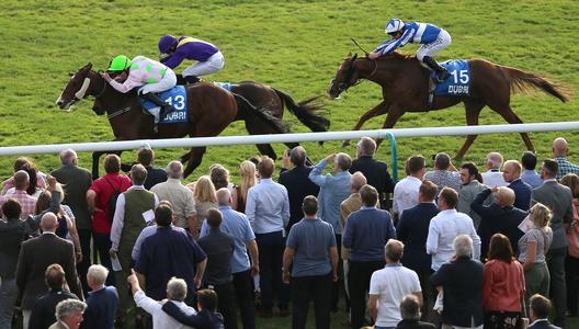 Low Sun holds off Uradel as Willie Mullins dominates Cesarewitch