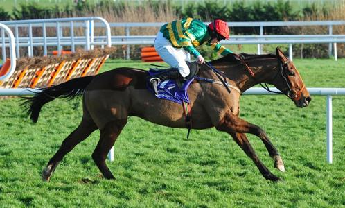 Spider Web catches Na Trachtalai Abu in Munster National thriller