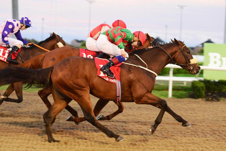 DUNDALK FRIDAY: Four-timer on the night for Halford