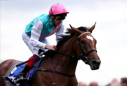 Enable team banking on curtailed campaign yielding Breeders' Cup advantage