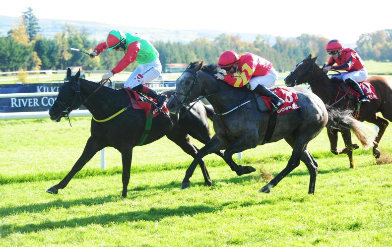 GOWRAN PARK MONDAY: Meade on high with double