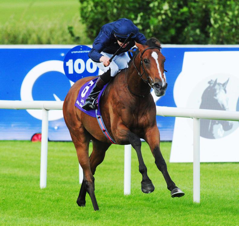 TATTERSALLS AUTUMN SALE PREVIEW: Quality cast-offs on offer