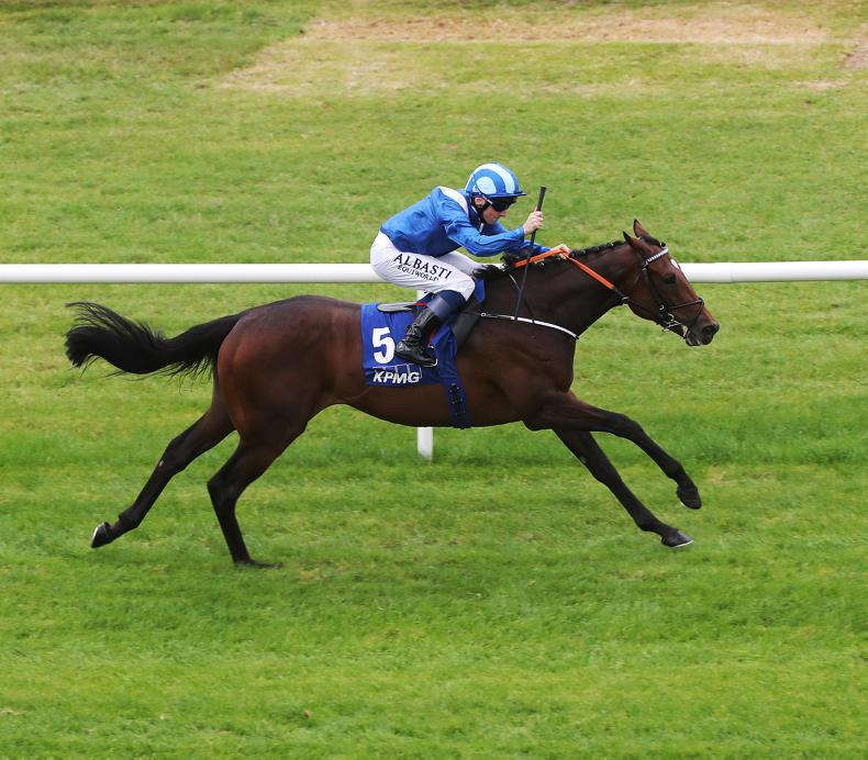 DONN McCLEAN: Guineas could be a true classic