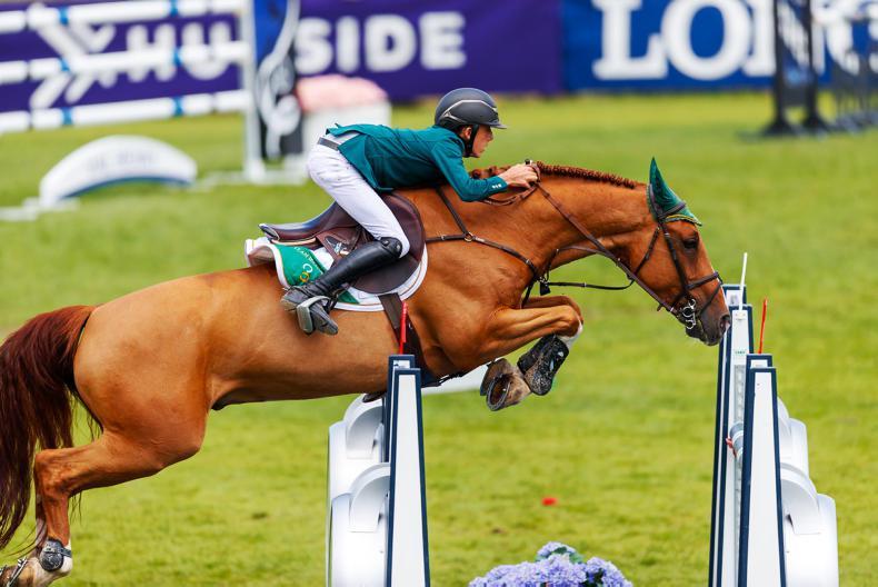 INTERNATIONAL: Howley and Allen land Dutch victories