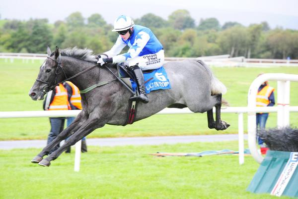 DOWN ROYAL PREVIEW: Nicholls' chaser to turn on the Charm