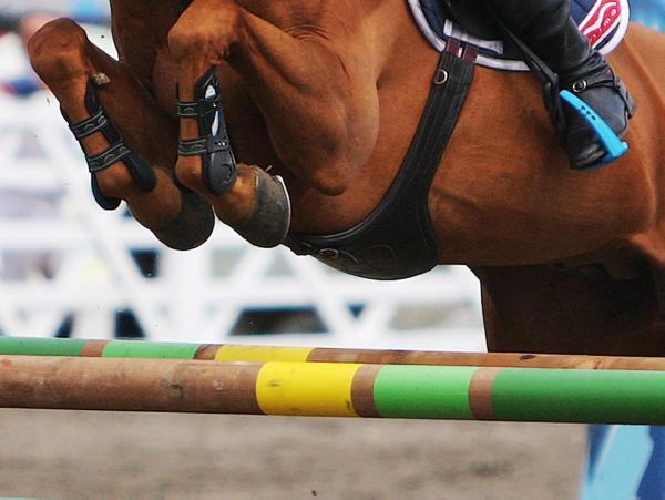 Cavan to host top show jumping