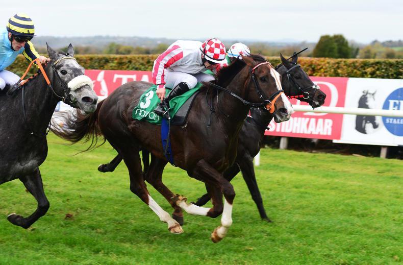 NAVAN WEDNESDAY: Dapper Paddy looses maiden tag