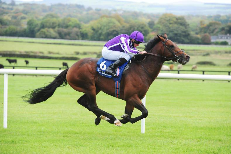 BRITISH PREVIEW: Magna Grecia expected to improve