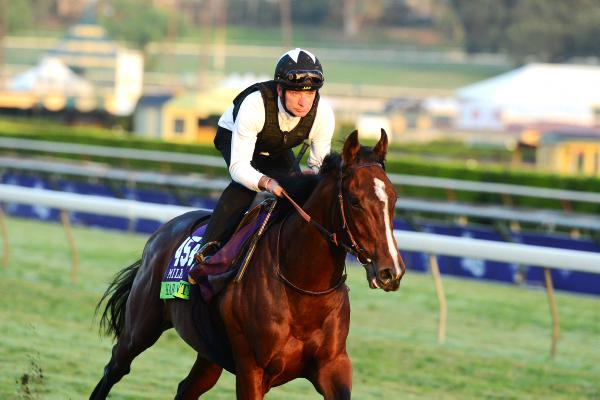 Breeders' Cup 2014: brief pedigree notes
