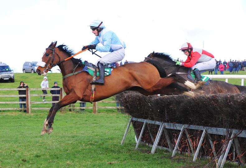 LOUGHBRICKLAND SATURDAY: Johnny gets King off the mark