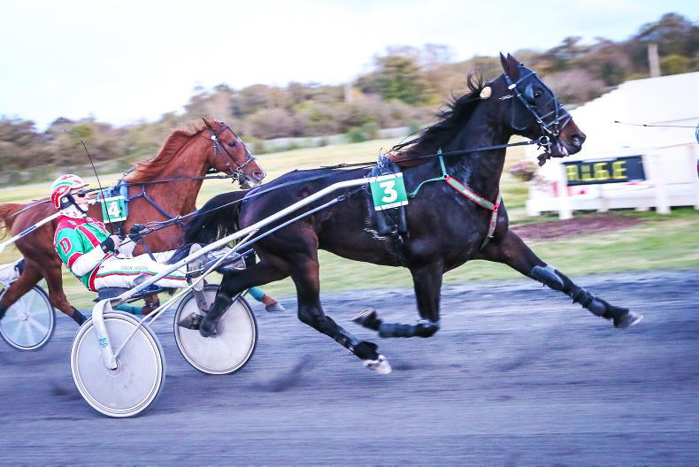 HARNESS RACING: Abraham gatecashes final party