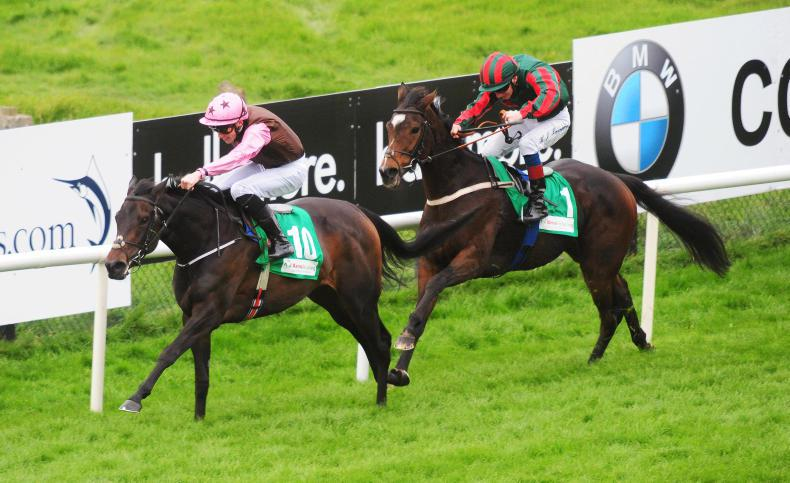 GALWAY MONDAY: Crosse on the double