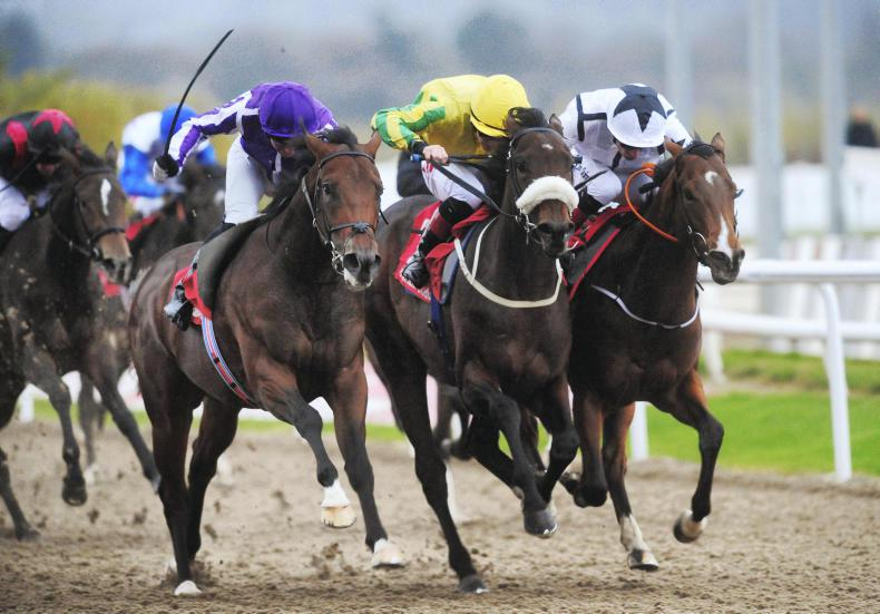 DUNDALK WEDNESDAY: Excelcius brave to the very end