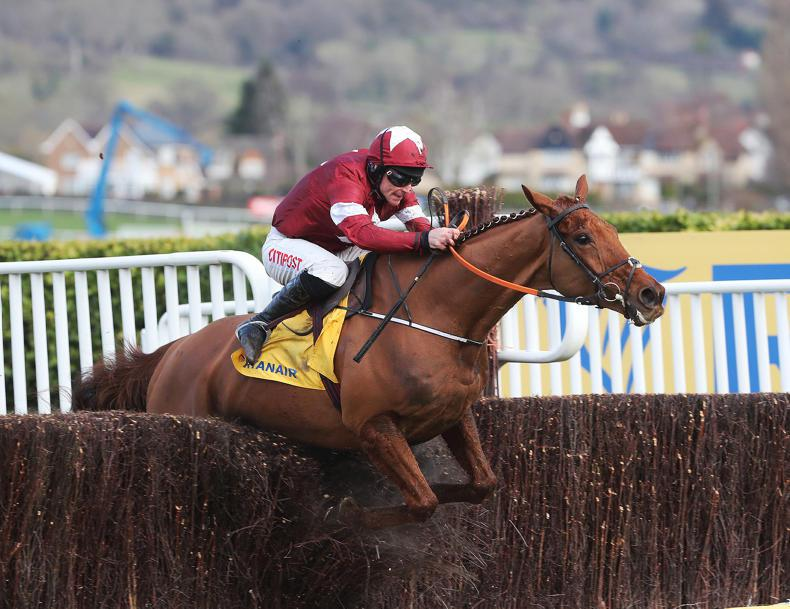 DOWN ROYAL PREVIEW - JN WINE CHASE: Balko fit for the battle