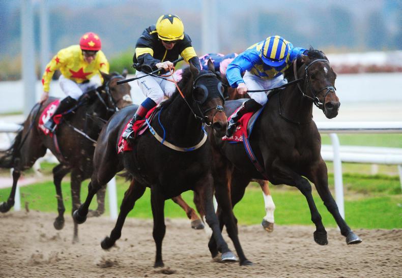 NEWS: Dundalk boss defends racing surface