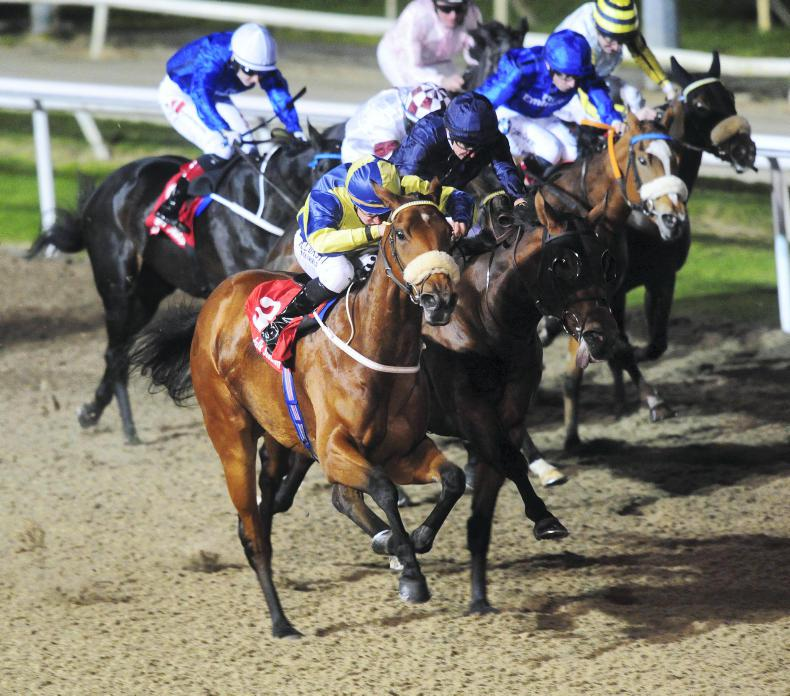 DUNDALK FRIDAY: Career best by Surrounding