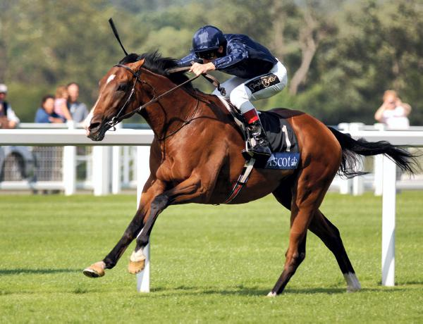 Porsenna extends purple patch for Dylan Thomas