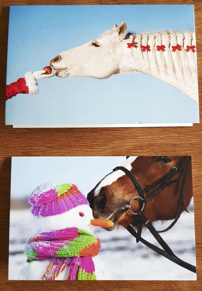 PONY TALES: RDAI Christmas cards on sale now