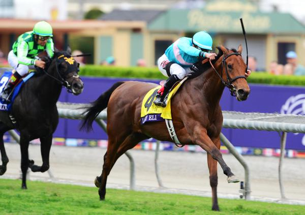 BREEDERS CUP: Easy for Eli as the Lady impresses
