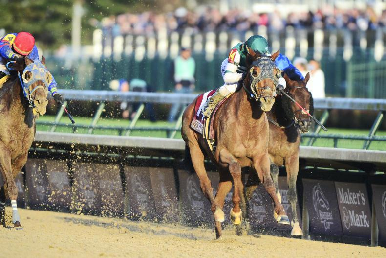 BREEDERS' CUP:  Accelerate dominates for Sadler