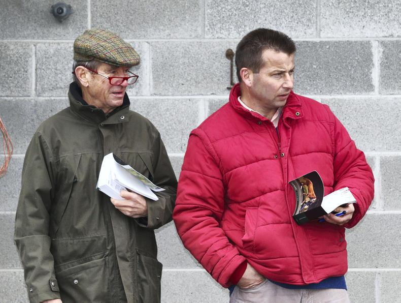 BREEDING SALE FEATURE: Gerry Ross, Kenilworth House Stud: Newmarket hopes