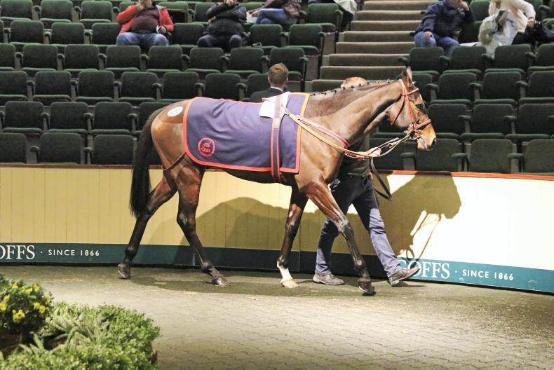 SALES: Demand for form horses at Goffs