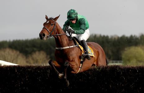 Mullins hopeful Footpad will not miss too much time following Naas defeat