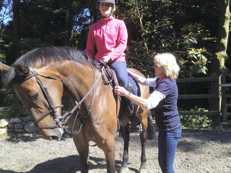 IRISH EQUINE VETERINARY CONFERENCE:  Dealing with equine back pain