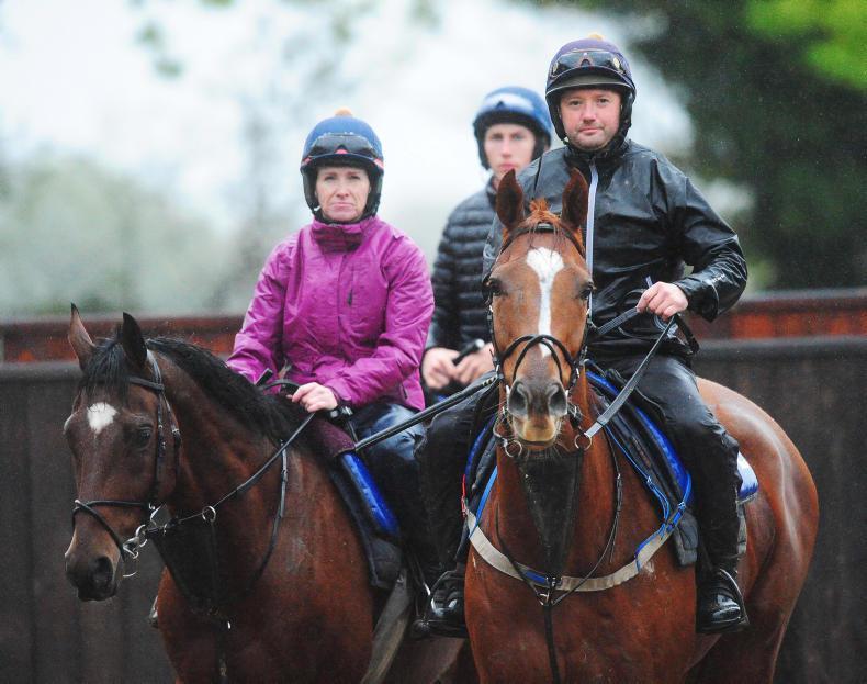 Gordon Elliott hoping for Punchestown rain as he mulls Samcro outing