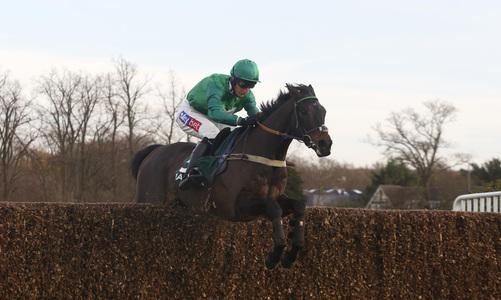 Sceau Royal reigns in Shloer success at Cheltenham