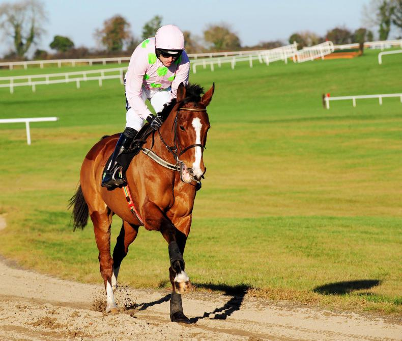 Walsh still has faith in Faugheen