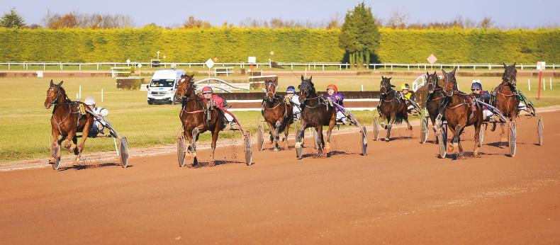 HARNESS RACING: Kane just pipped in Normandy