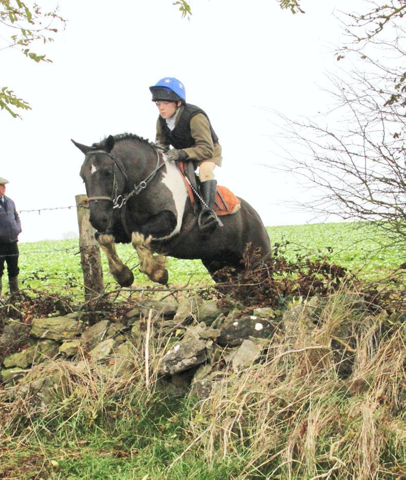IRISH HORSE WORLD FIXTURES, NOVEMBER 24th 2018