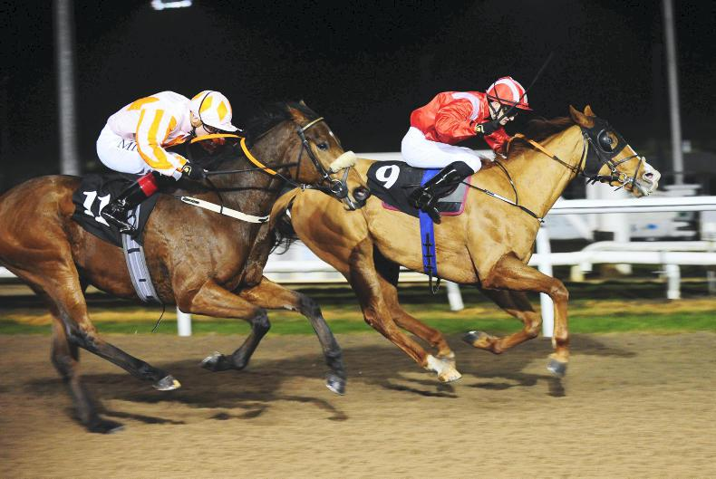 DUNDALK WEDNESDAY: Double on the card for Lynam