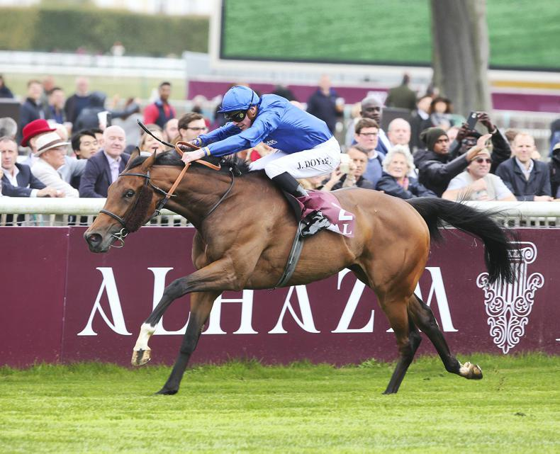 Star filly Wild Illusion to return in 2019