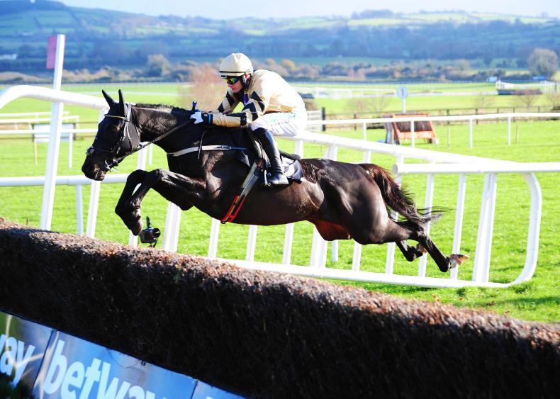 PUNCHESTOWN SATURDAY: Voix Du Reve can make the grade