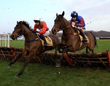 Paisley Park pounces late to grab stayers' hurdle spoils